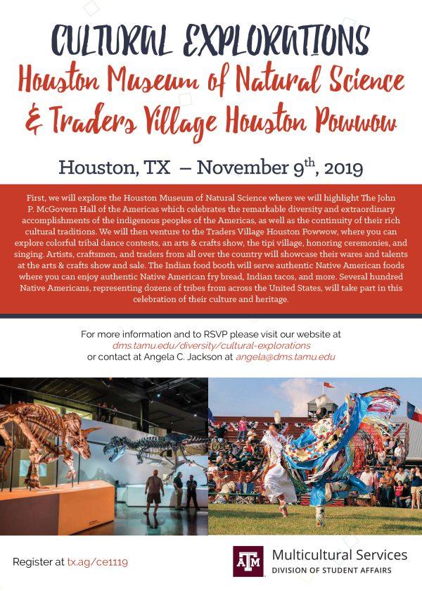 Cultural Explorations: Houston