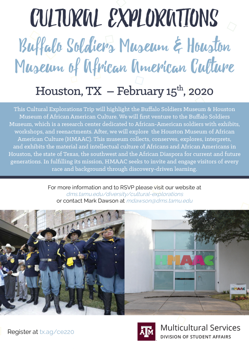 Cultural Explorations: Houston, TX