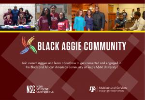 DMS Summer Hangouts: Black Aggie Community Mondays