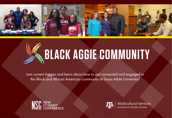 NSC Black Aggie Community